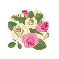 rosas isoladas em fundo branco