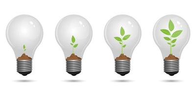 Plant growing inside light bulb  vector