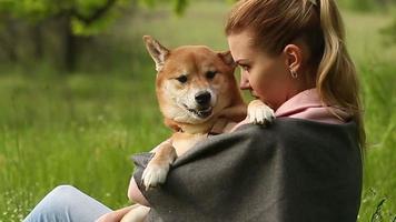 Mädchen hält an Händen Hund Shiba Inu
