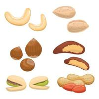 Nut set isolated on white background vector