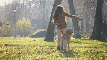 Girl and her dog playing in a park