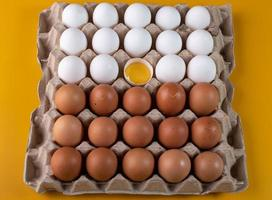Brown and white eggs on yellow background