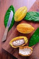 fruit de cacao frais