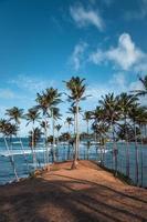 uitzicht op de kokospalmheuvel gedurende de dag