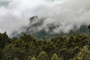 Green mountains covered in fog