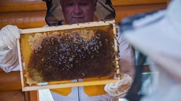 apiculteur âgé montrant le pénal de la ruche