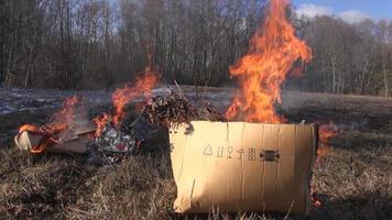 Rubbish in cardboard boxes burning in spring video