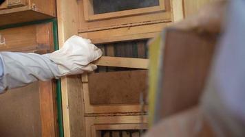 Imker öffnet den Deckel des Bienenstocks