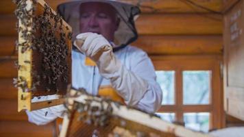 vérifier les panneaux de la ruche