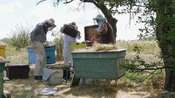 three beekeeper stand near the hive and prepare the cell for pumpinga