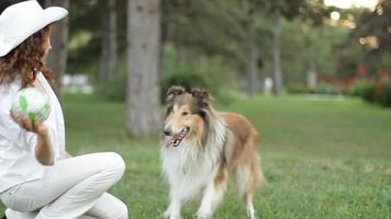 jogo de bola com o cachorro