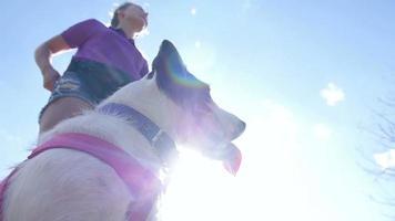 giovane donna che dà al suo cane un trattamento all'aperto