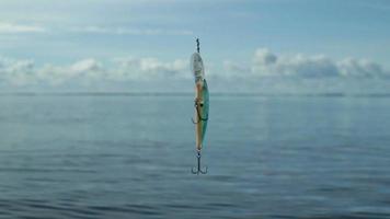 wobbler on the fishing line