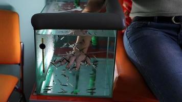 Fisch schält Hände. Fisch in einem Aquarium