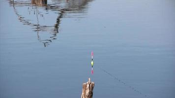 pesca mattutina