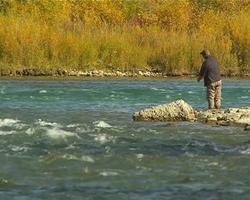 pescando in un fiume