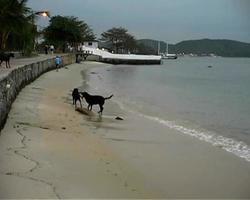 spiaggia di buzios