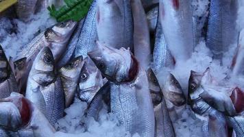 bazar de peixe