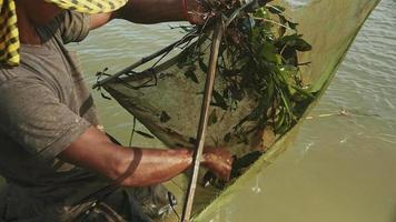 obere Nahaufnahme eines Garnelenfischers, der Garnelen fängt, Netz ködert und es tiefer in einen Fluss schiebt