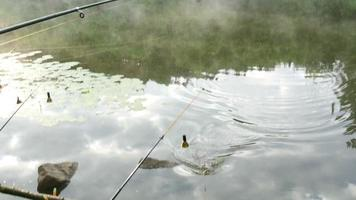 Fisch an einem Haken gefangen