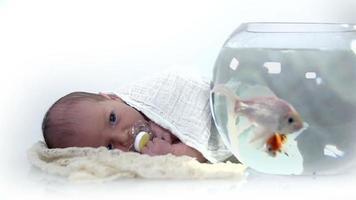 kleines Baby, das die Fische im Aquarium beobachtet