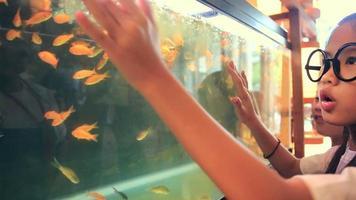 glückliches asiatisches Kind, das Fisch im Aquarium sucht