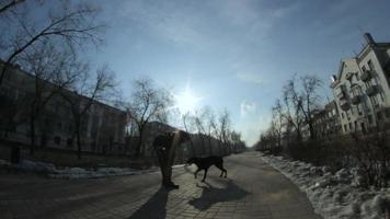 grote hond doberman plezier en spelen met een man