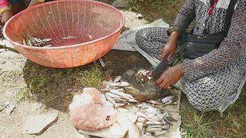 donna che taglia la testa di piccoli pesci su una tavola di legno rotonda