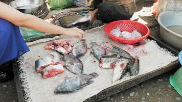donna che taglia il pesce nella bancarella del mercato