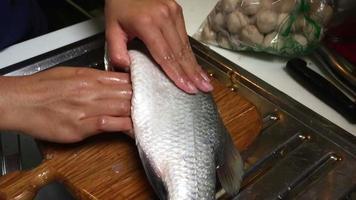 nettoyage du poisson