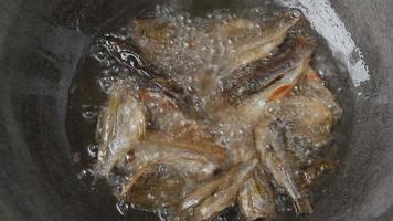 faire frire du poisson