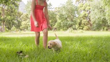 ragazza che corre e gioca con il cucciolo