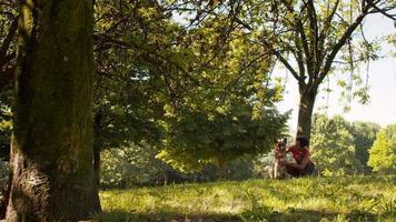 gens, animaux domestiques, gardien de chien avec des chiens alsaciens dans le parc
