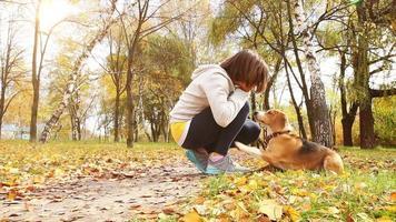 ragazza che gioca con il cucciolo di cane beagle nel parco autunnale