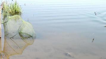 Der Fischer hat einen Fisch gefangen