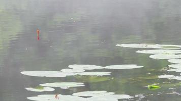 Angeln Bobber schwimmt im Wasser