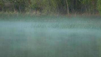 canna da pesca gettata in un lago nebbioso