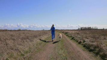 rennen met hond. video