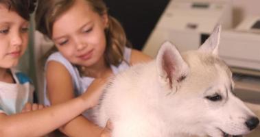 niños acariciando perro