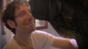 Mano de cerca el hombre sonríe mientras le da un baño a su perro de raza grande video