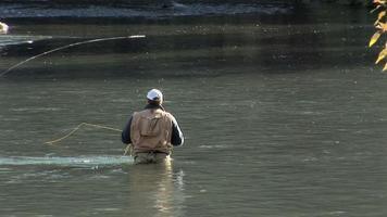 pesca a mosca-primo piano