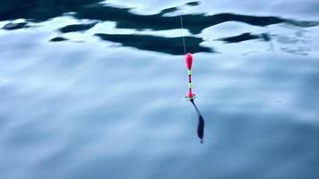 corcho de pesca en el agua