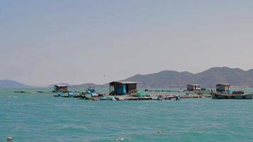viskwekerijen in de stad nha trang van vietnam