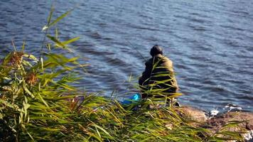 pescador na margem do lago video
