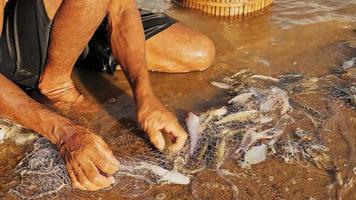 Primo piano sul pescatore che rimuove il pescato invischiato e lo tiene in un cesto di bambù