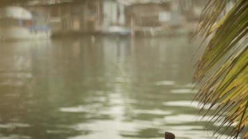 junge Leute und Hobby, Junge, der zum Spaß am See fischt
