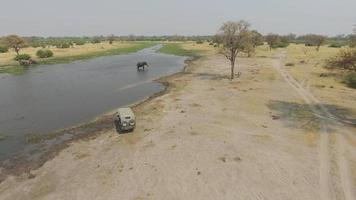 ripresa aerea del veicolo safari guardando elefante a fianco del delta dell'okavango
