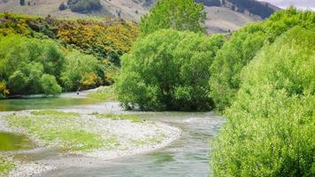 Fly fisherman in pristine New Zealand river. Wide shot.
