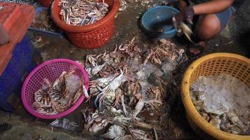 Kochen Sie die Krabbe, bevor Sie das Fleisch aus der Schale nehmen