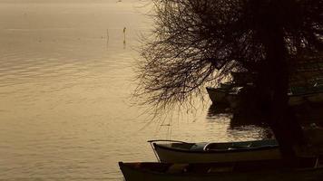 Fisherman approaching